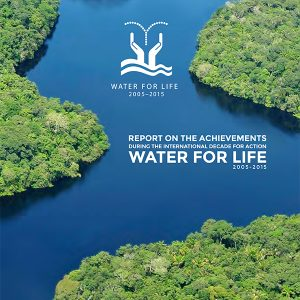 Achievements during the International Decade for Action Water for Life