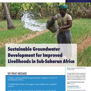 Water International Policy Briefs N° 9