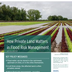 IWRA Policy Briefs N°1