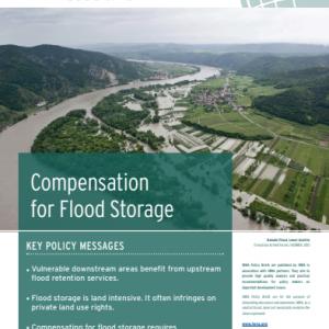 IWRA Policy Briefs N°3