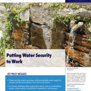 Water International Policy Brief N°12