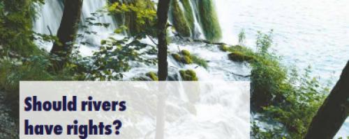 Water International Policy Brief N°13