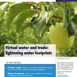 Water International Policy Brief N°17