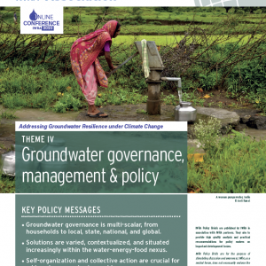 IWRA Policy Briefs N° 10